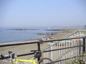 葉山公園から江ノ島を望む