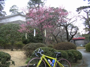 bike_20060212a