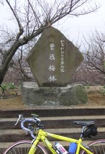 bike_20060212d