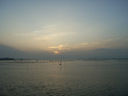 Hamana_20060725j
