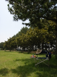 Hamana_20060726e1